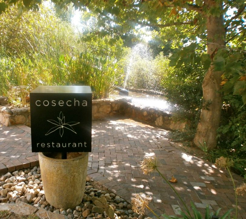 Welcome to the beautiful setting of Cosecha