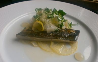Grilled Hay Smoked Mackerel with lemon salad, fennel and pea shoots