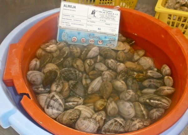 A bowlful of fresh clams (almeja)