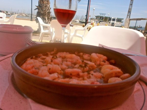 Gambas looking out towards the sea