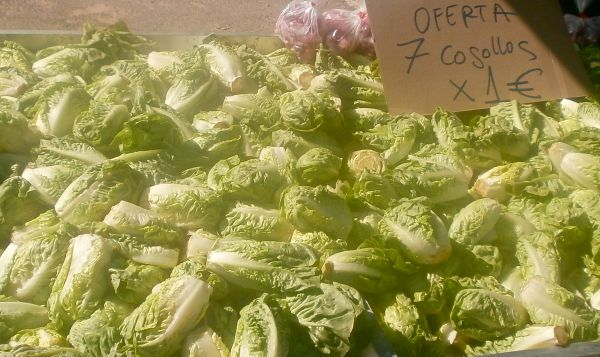 Or how about 7 lettuces for 1 euro?